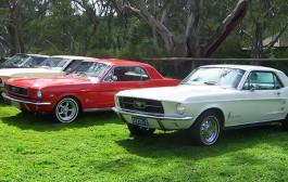 Australia Day January 2010