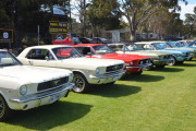 Yankalilla Cruise Sunday 20th November 2016