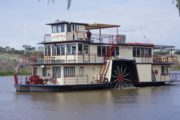 Murary River Cruise - Sunday 11th August