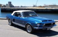 The Shelby Mustangs